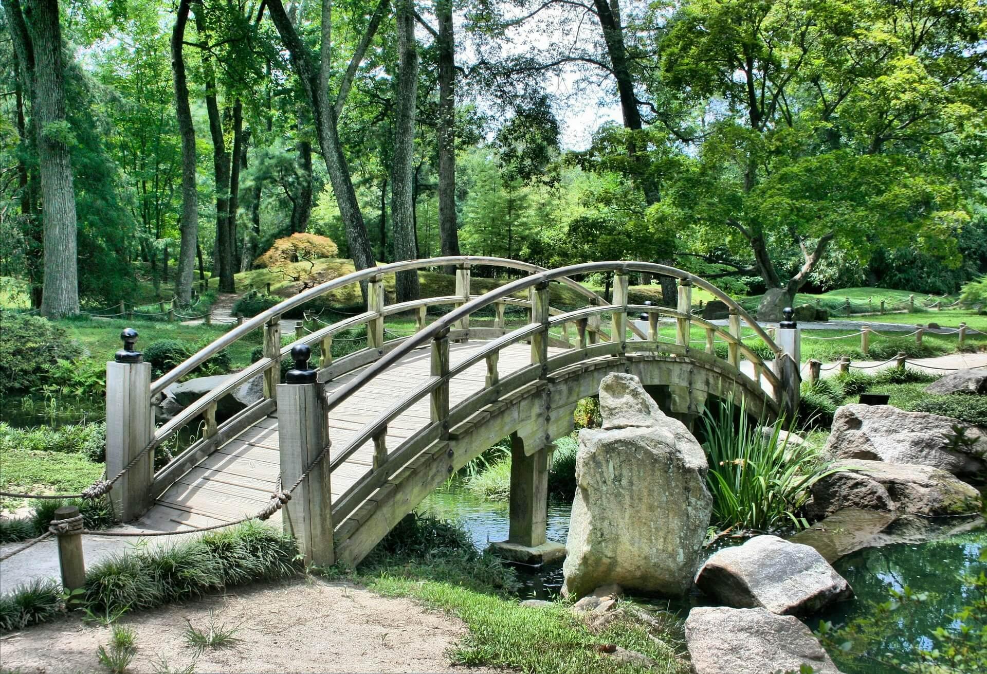 Brücke Natur